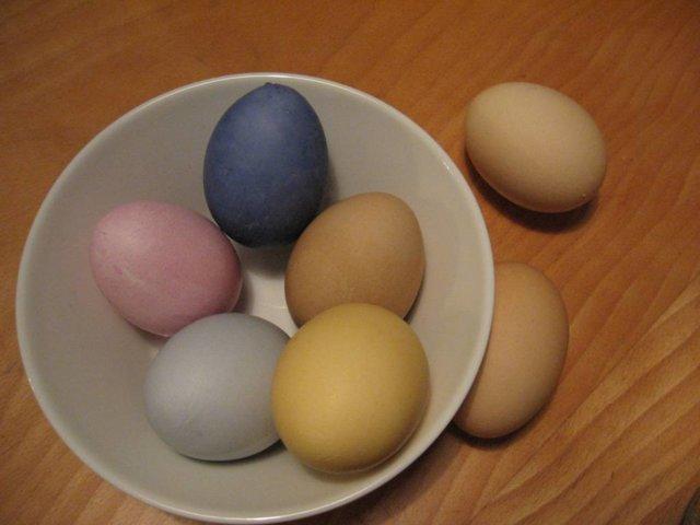 Värikkäät munat 1
