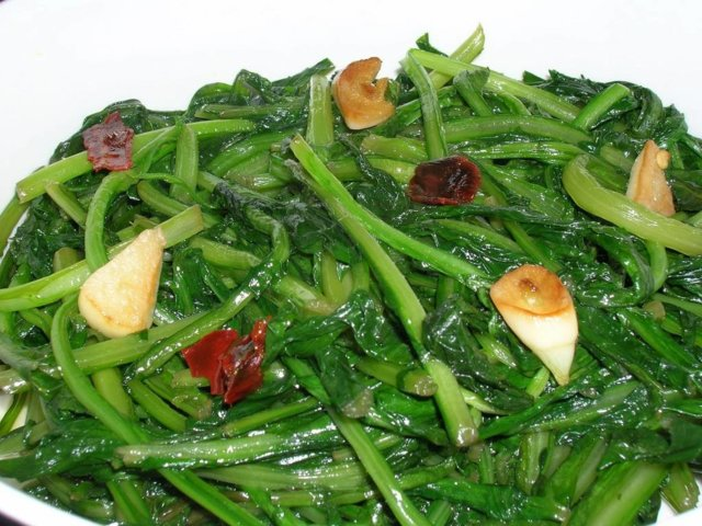 Salaattisikuri