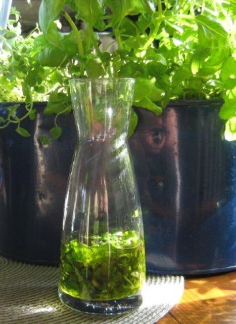 Basilikaöljy tai basilikanlehtiä oliiviöljyssä 1