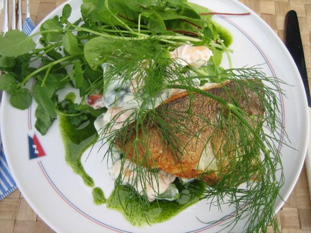 Siikaa katkarapu-pestokastikkeessa salaattipedillä 1