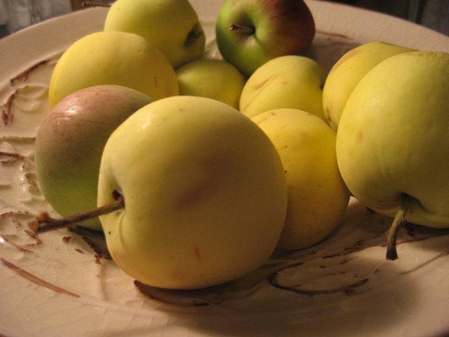 Reseptikuva: Omenaleivokset 2