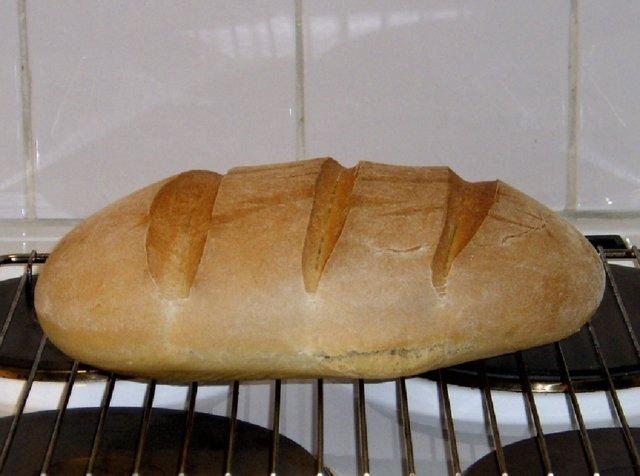 Maalaisleipä taikinajuurella 1
