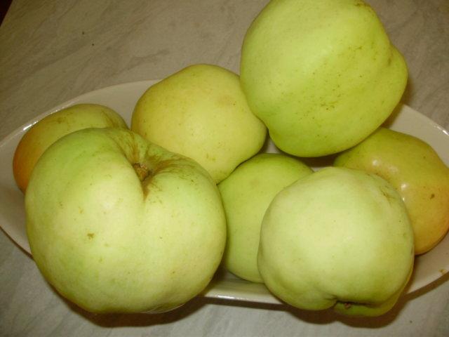 Omenahyve Resepti