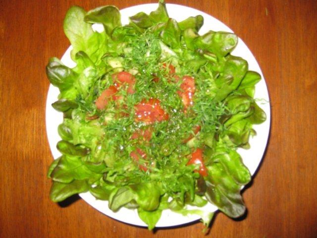 Uunilohta tomaattitonnikalalla 9
