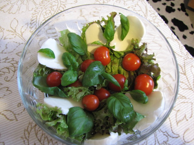 Vesimeloni-mozzarellasalaatti 2