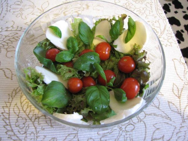 Vesimeloni-mozzarellasalaatti 3