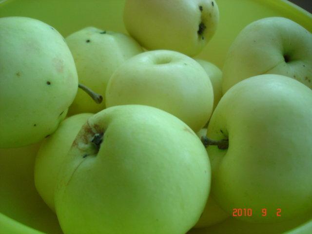 Rapea omenapiirakka 2