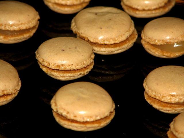 Macaronit 4