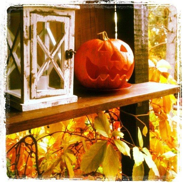 Reseptikuva: Kurpitsapiiras & kurpitsalyhty - Pumpkin Pie & Jack-o-Lantern 5
