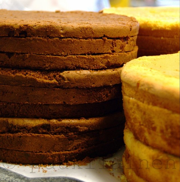 Suklainen kakkupohja