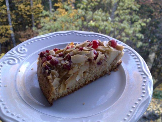 Reseptikuva: Omena Karpalo Kakku 1