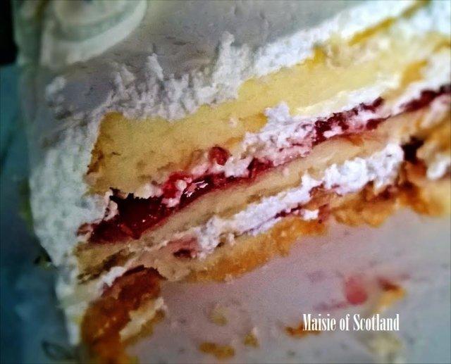 Winter Cake eli raikas talvikakku (G) 2