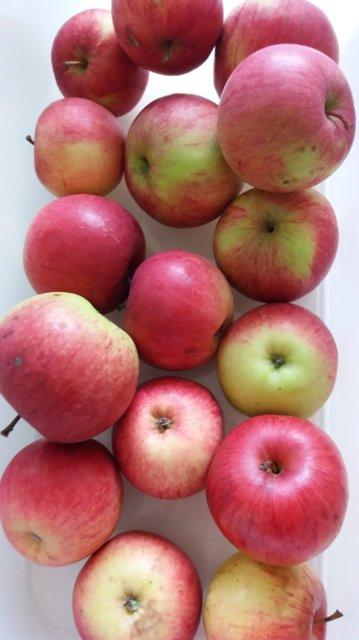 Omenasosetta pakastimeen 10.2.2017