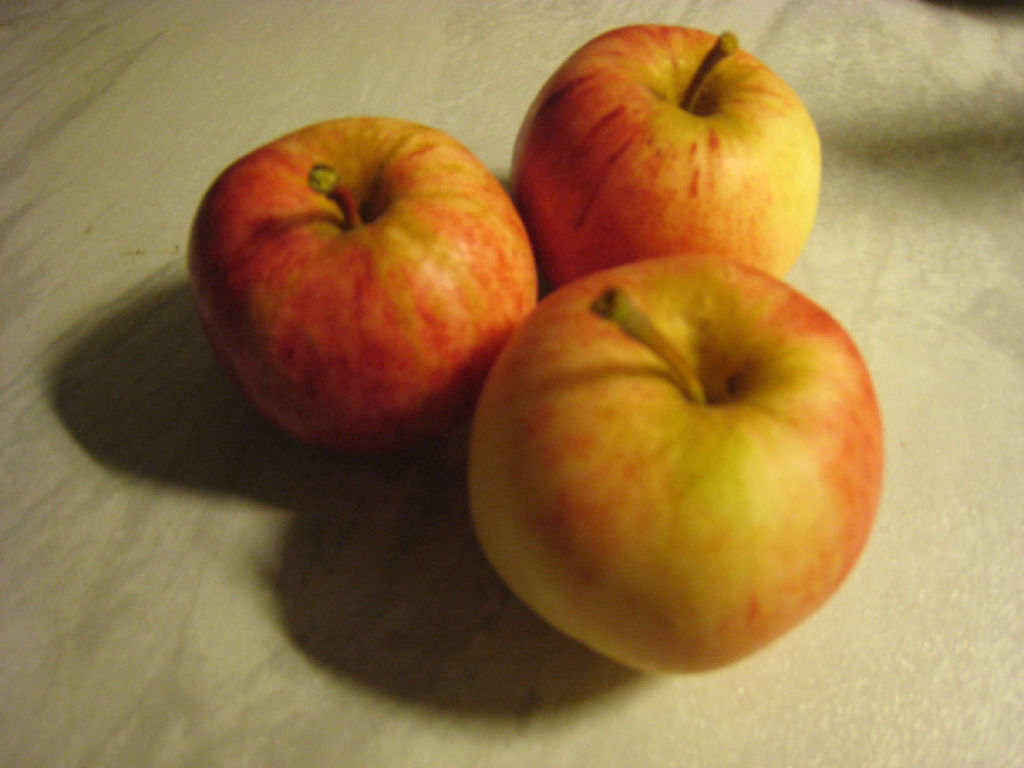 Omenan Säilöntä