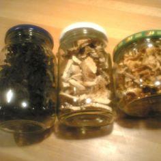Sienimuhennos kuivatuista sienistä