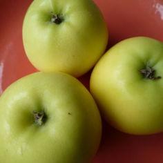 Omenaiset lihakääryleet