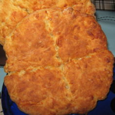 Sitrus-juustoteeleivät