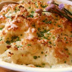 kalapata juusto-currykastikkeessa