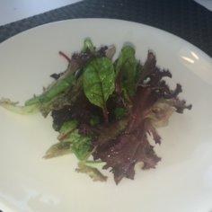 Kastike vihreälle salaatille (fine dining)